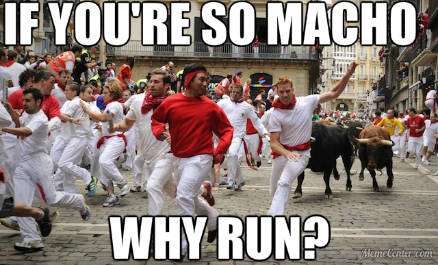 macho bull runners