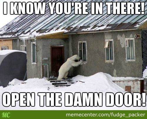 polar bear door