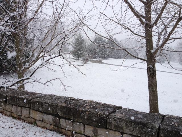 snow cresent hill