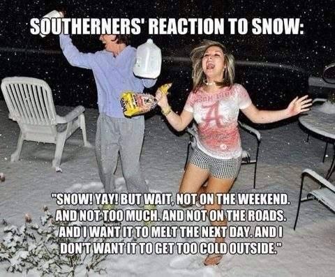 snow terror south