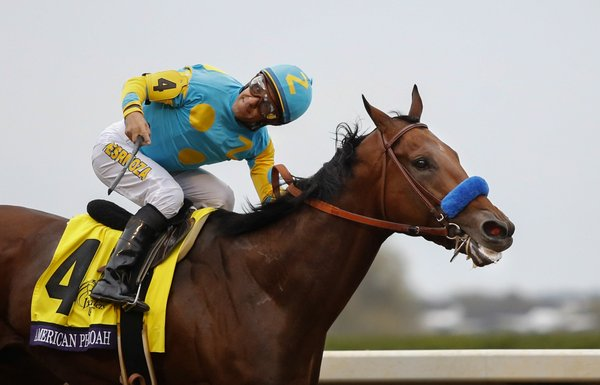 American Pharoah thunders past the finish line of the Breeder's Cup Classic, October 31, 2015 (photo: Scott Utterback, The Courier-Journal)